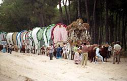 20060530213456-caminorocio.jpg