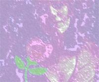 20130122113340-731234492-85a7db121a-m.jpg